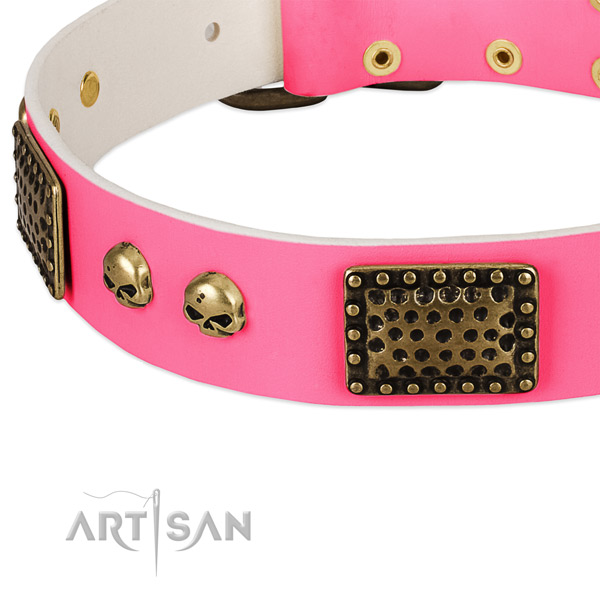 Rust resistant adornments on natural leather dog collar for your canine