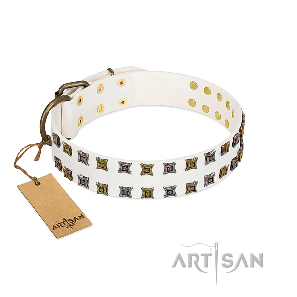 Leather collar with unusual studs for your dog
