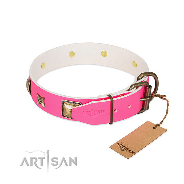 Strong fittings on leather collar for stylish walking your doggie