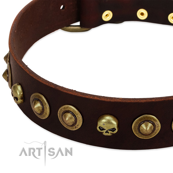Stylish decorations on full grain natural leather collar for your four-legged friend