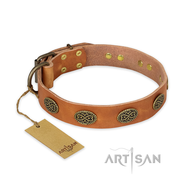 Stylish design leather dog collar with rust resistant fittings