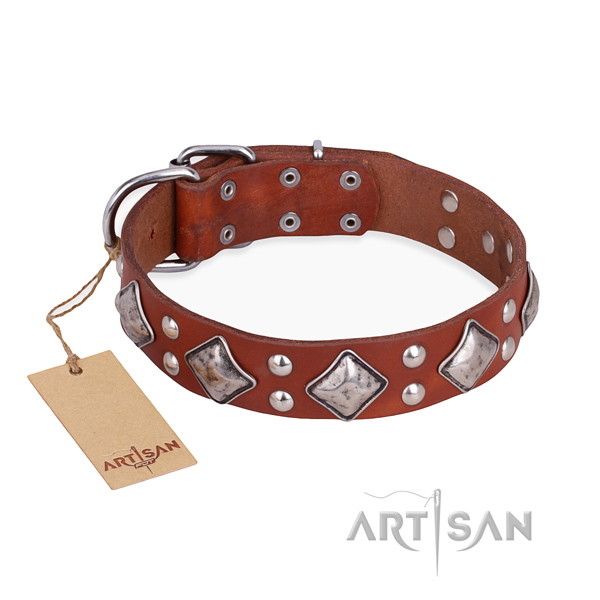 Fancy walking adjustable dog collar with rust-proof hardware