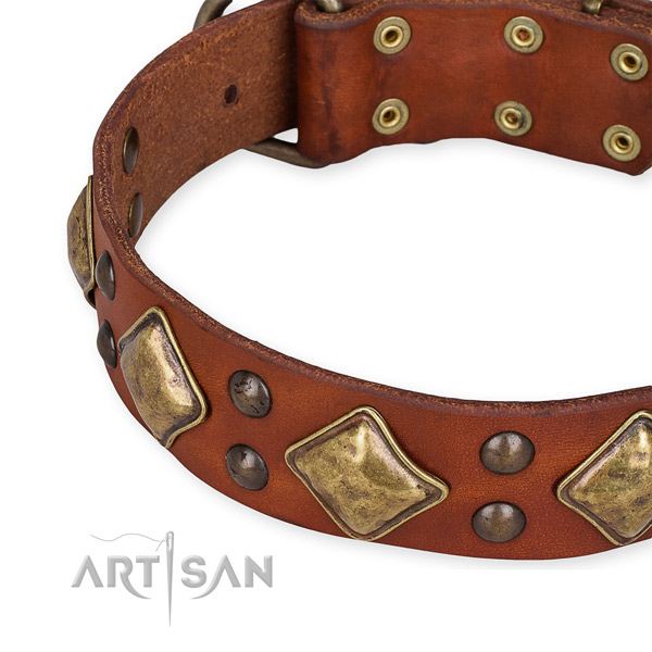 Full grain natural leather collar with corrosion resistant traditional buckle for your handsome canine