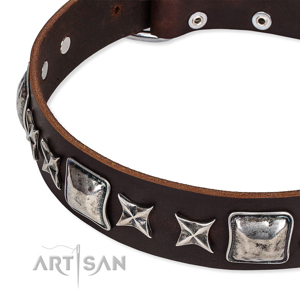Comfortable wearing studded dog collar of top notch full grain genuine leather