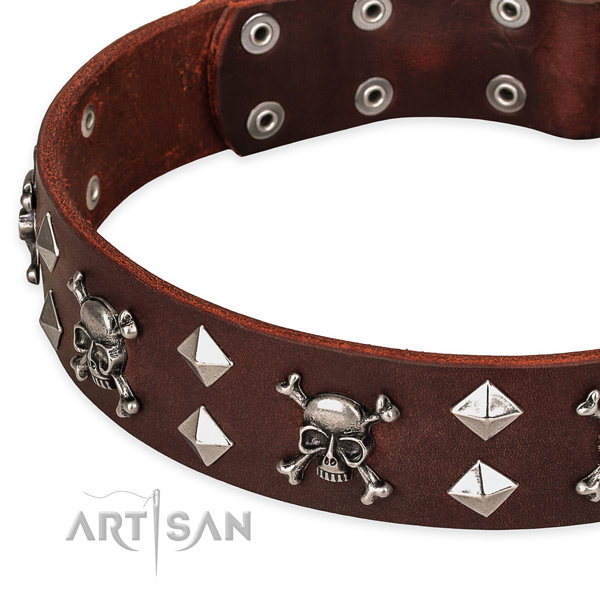 Walking decorated dog collar of fine quality natural leather