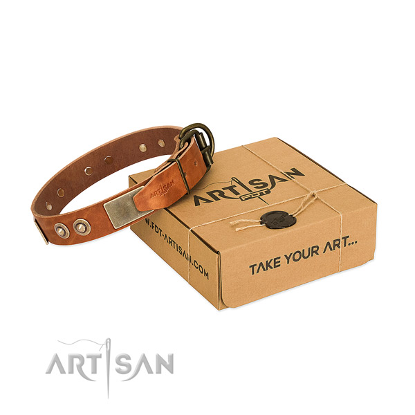 Durable adornments on dog collar for everyday walking