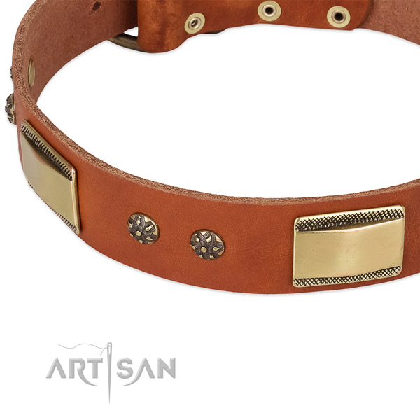 Rust resistant adornments on natural genuine leather dog collar for your pet