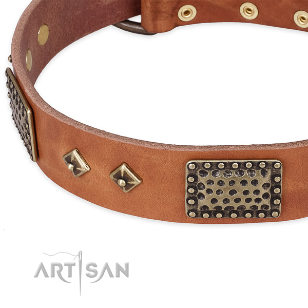 Rust resistant decorations on full grain genuine leather dog collar for your dog
