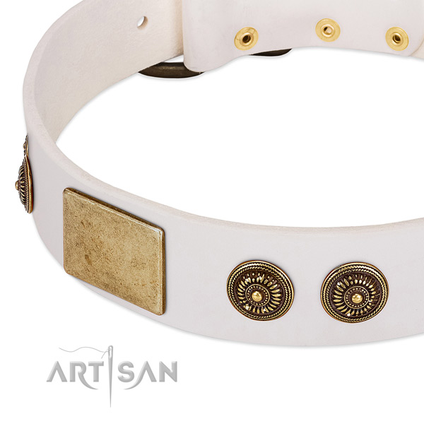 Exquisite dog collar handcrafted for your beautiful four-legged friend