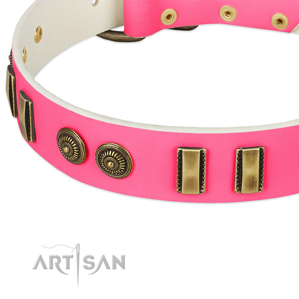 Durable embellishments on full grain leather dog collar for your dog