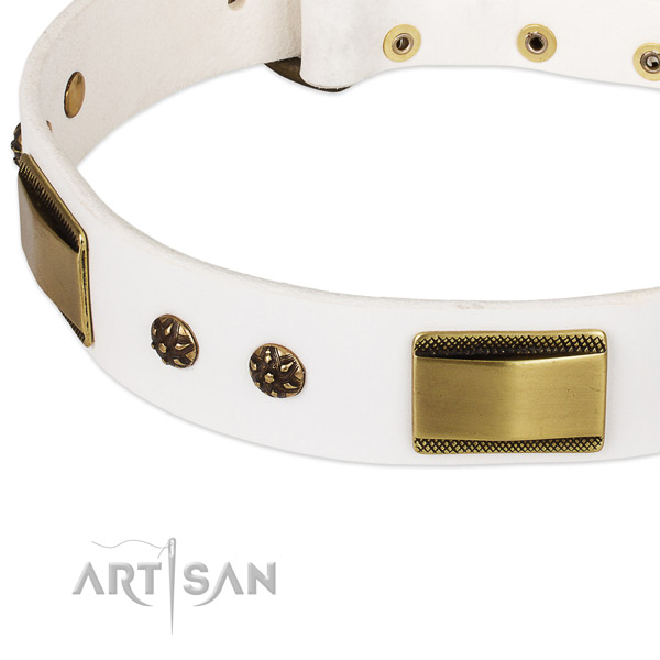 Rust resistant adornments on full grain natural leather dog collar for your four-legged friend
