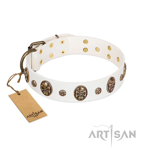 Top quality leather collar for your doggie