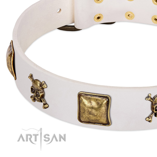 Everyday walking natural leather dog collar with exceptional adornments