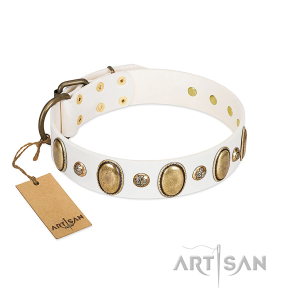 Genuine leather dog collar of flexible material with fashionable adornments