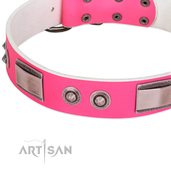 Unusual full grain natural leather collar with studs for your doggie