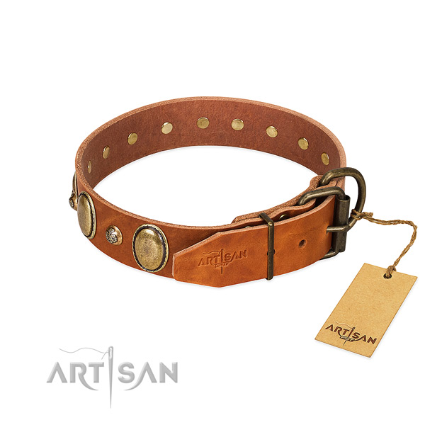 Everyday walking full grain genuine leather dog collar