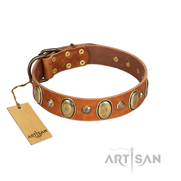Natural leather dog collar of high quality material with significant studs
