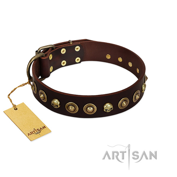 Full grain leather collar with stylish decorations for your canine