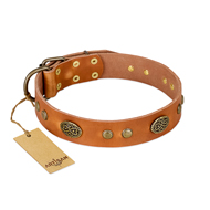 """Sun Beams"" FDT Artisan Tan Leather Labrador Collar with Decorations"