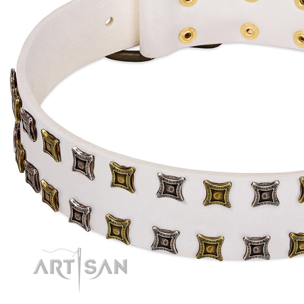 Leather dog collar with studs for your stylish canine
