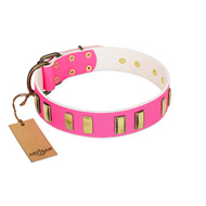 """Rubicund Frill"" FDT Artisan Pink Leather Labrador Collar with Engraved and Smooth Plates"