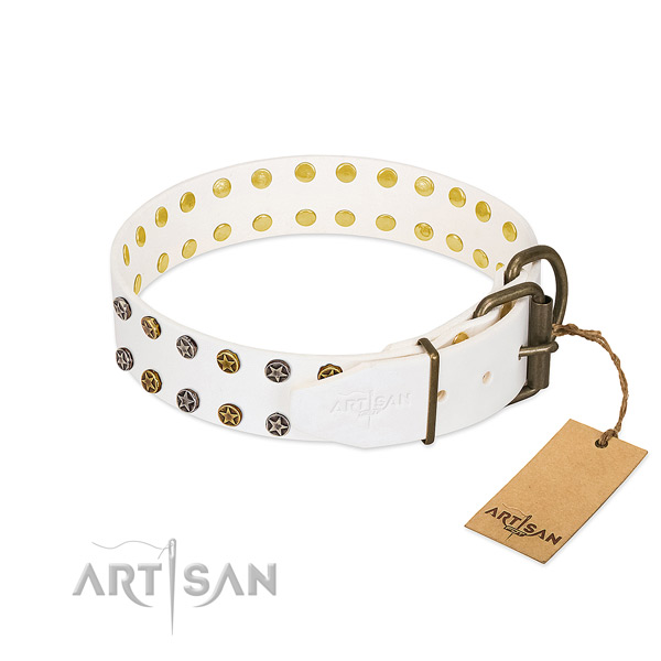 Incredible natural leather dog collar with corrosion proof studs