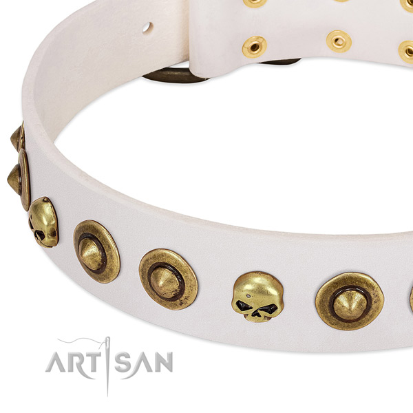 Stylish design embellishments on genuine leather collar for your pet