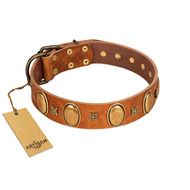 """Glossy Autumn"" Designer Handmade FDT Artisan Tan Leather Labrador Collar with Ovals and Studs"