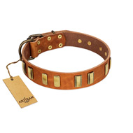 """Olive Slice"" FDT Artisan Tan Leather Labrador Collar with Engraved and Smooth Plates"