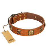 """Knights Templar"" FDT Artisan Tan Leather Labrador Collar with Skulls and Crossbones Combined with Squares"