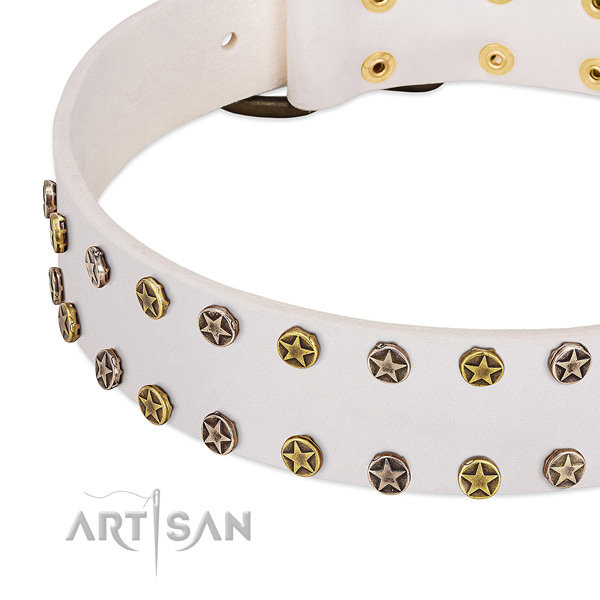 Incredible decorations on full grain leather collar for your canine