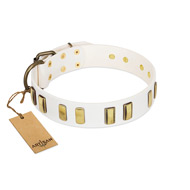 """Glorious Light"" FDT Artisan White Leather Labrador Collar with Old Bronze-like Plates"