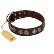"""Treasure Hunter"" FDT Artisan Brown Leather Labrador Collar with Old-Bronze-like and Silvery Medallions"
