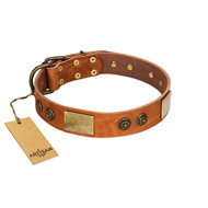 """Bronze Century"" FDT Artisan Tan Leather Labrador Collar with Plates and Brooches with Cool Ornament"