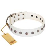 """Fresh Breeze"" FDT Artisan Elegant White Labrador Collar with Silvery Studs"