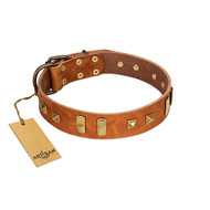 """Sand of Time"" FDT Artisan Tan Leather Labrador Collar with Old Bronze-like Studs and Plates"