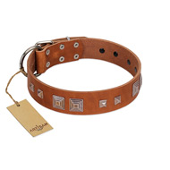 """Egyptian Gifts"" Handmade FDT Artisan Tan Leather Labrador Collar with Chrome-plated Pyramids"