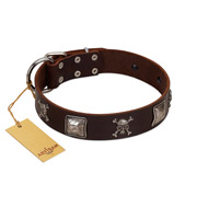 """Nut-Brown Finery"" Embellished FDT Artisan Brown Leather Labrador Collar with Chrome Plated Crossbones and Plates"