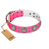 """Silver Star"" Fantastic FDT Artisan Pink Leather Labrador Collar with Engraved Studs"
