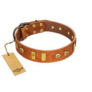 """Egyptian Script"" FDT Artisan Tan Leather Labrador Collar with Plates and Small Studs"