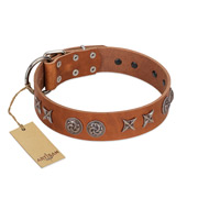 """Brave Spirit"" Handmade FDT Artisan Designer Tan Leather Labrador Collar with Shields"