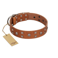 """Enchanted Skulls"" FDT Artisan Tan Leather Labrador Collar with Chrome Plated Skulls"