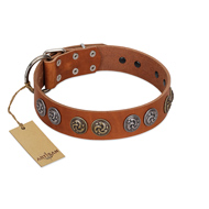 """Luxurious Life"" Premium Quality FDT Artisan Tan Leather Labrador Collar with Round Adornments"