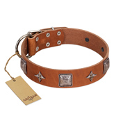 """Lucky Star"" FDT Artisan Tan Leather Labrador Collar with Silver-Like Embellishments"