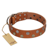 """Ancient Symbol"" Trendy FDT Artisan Tan Leather Labrador Collar with Silver- and Gold-Like Studs"