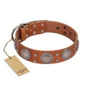 """Far Star"" FDT Artisan Tan Leather Labrador Collar with Engraved Studs"