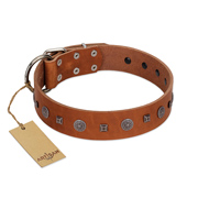 """Sweet Caramel"" Designer FDT Artisan Tan Leather Labrador Collar"