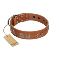 """Antique Figures"" FDT Artisan Tan Leather Labrador Collar with Silver-like Engraved Plates"