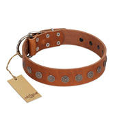 """Lucky Star"" Handmade FDT Artisan Designer Tan Leather Labrador Collar with Round Plates"