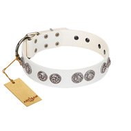 """Eye Candy"" Appealing FDT Artisan White Leather Labrador Collar with Chrome Plated Medallions"
